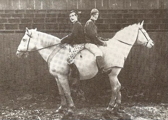 vintage fake photo of a two headed horse