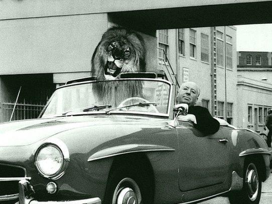 Alfred Hitchcock, May 1964