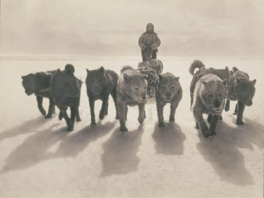 First Australasian Antarctic expedition, 1911-1914