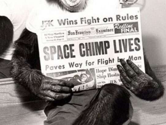 Space Chimp Lives! 1961