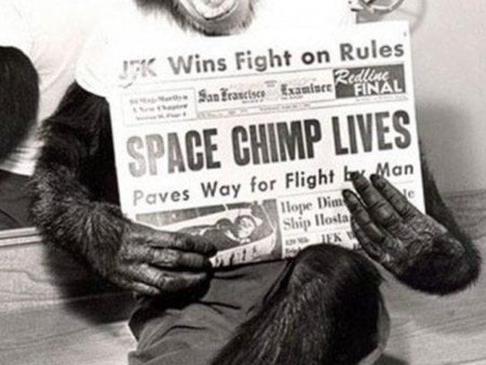 Space Chimp Lives! 1961