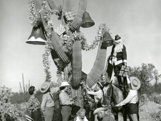 Santa Claus decorating a saguaro cactus, National Park Service, Arizona, 1955