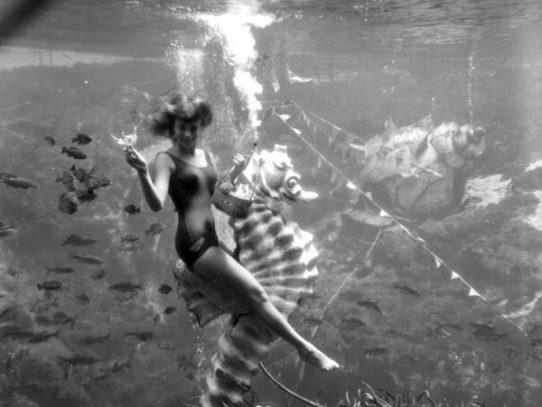 An underwater photo, Florida, 1962