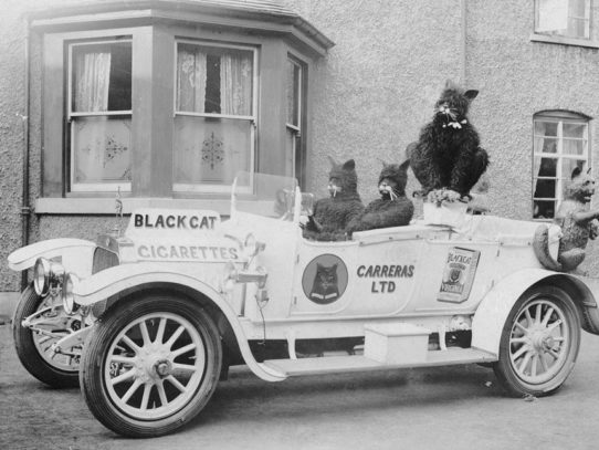 A customized car advertises Black Cat cigarettes, England, circa 1915