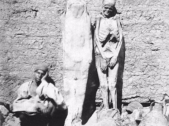 Egyptian mummy seller, 1875