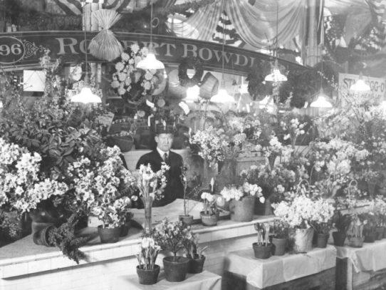 Flower seller in Center Market, Washington, D.C., 1915