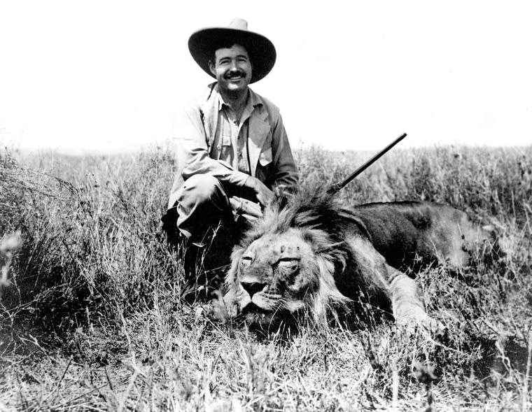 Hemingway cat lion
