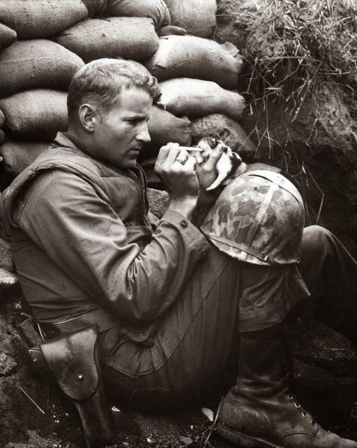 US Marine feeding Kitten