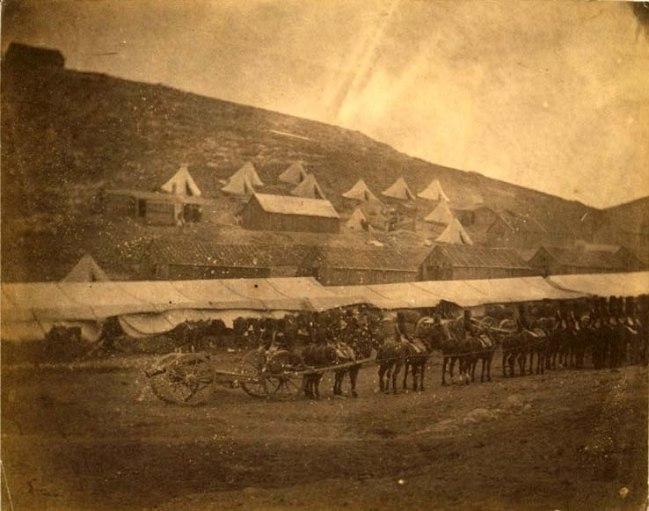 Field train, horse artillery. Horse team pulling a gun carriage