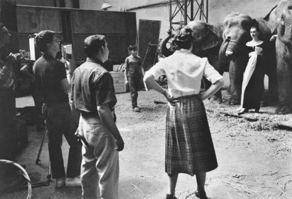 Dovima with Elephants, behind the scene