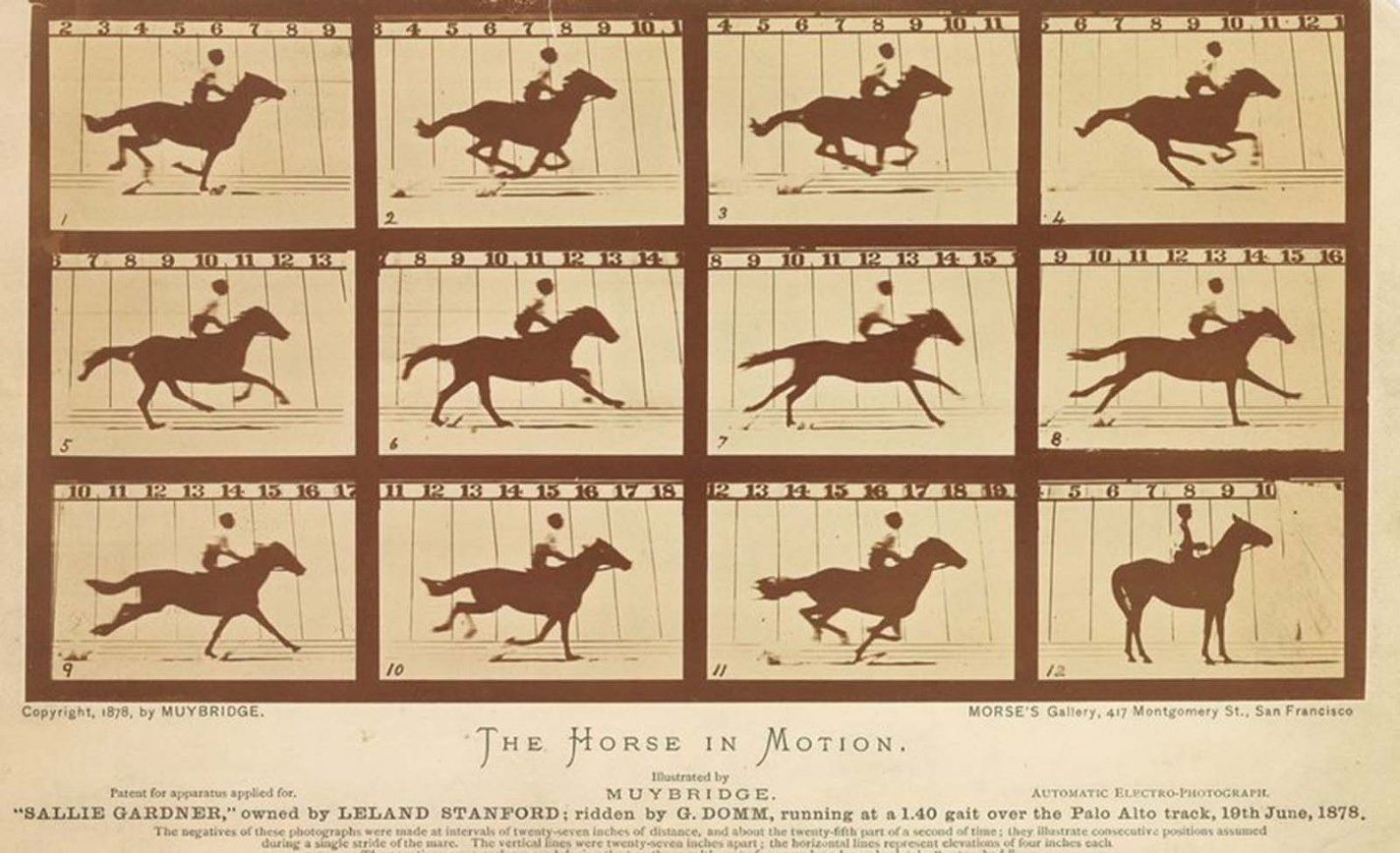 historical photos  of The Horse in Motion, Eadweard Muybridge, 1878