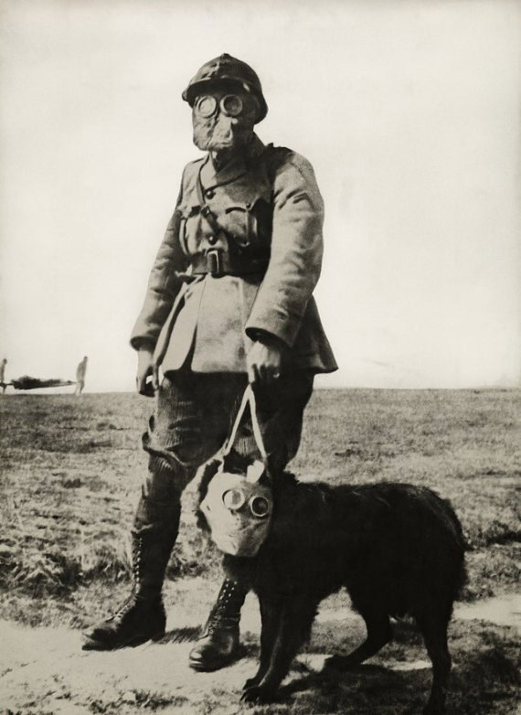 french soldier with dog in a mask