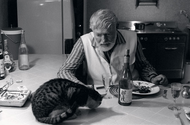 Hemingway, Cat and alcohol