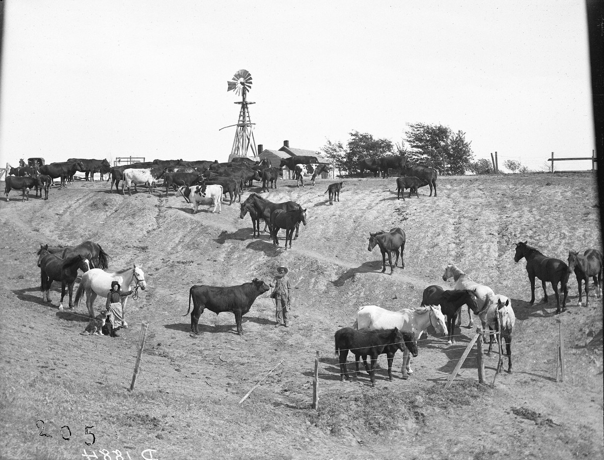 R. Elwood Ranch, near Carney, Nebraska, 1903
