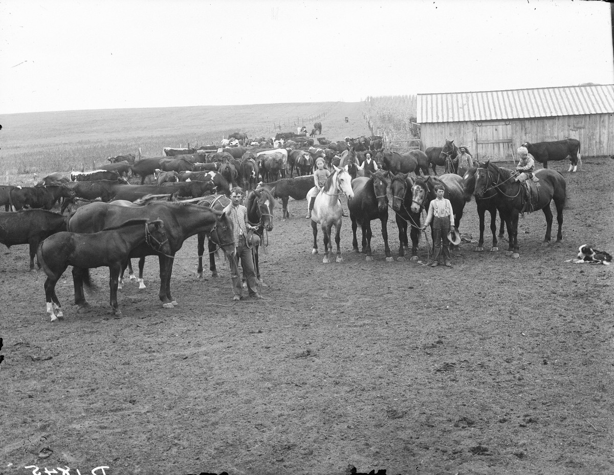 Ranch, Cherry County, Nebraska, 1901.