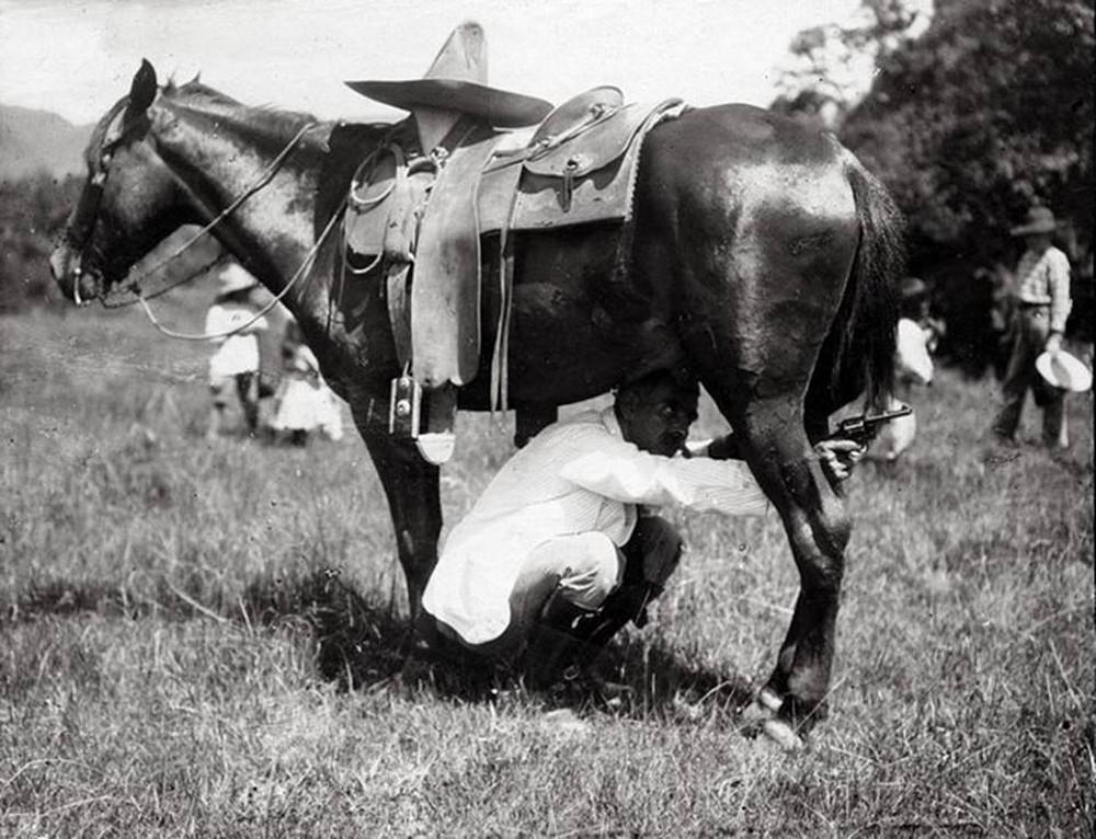 Bizarre photos of military tricks