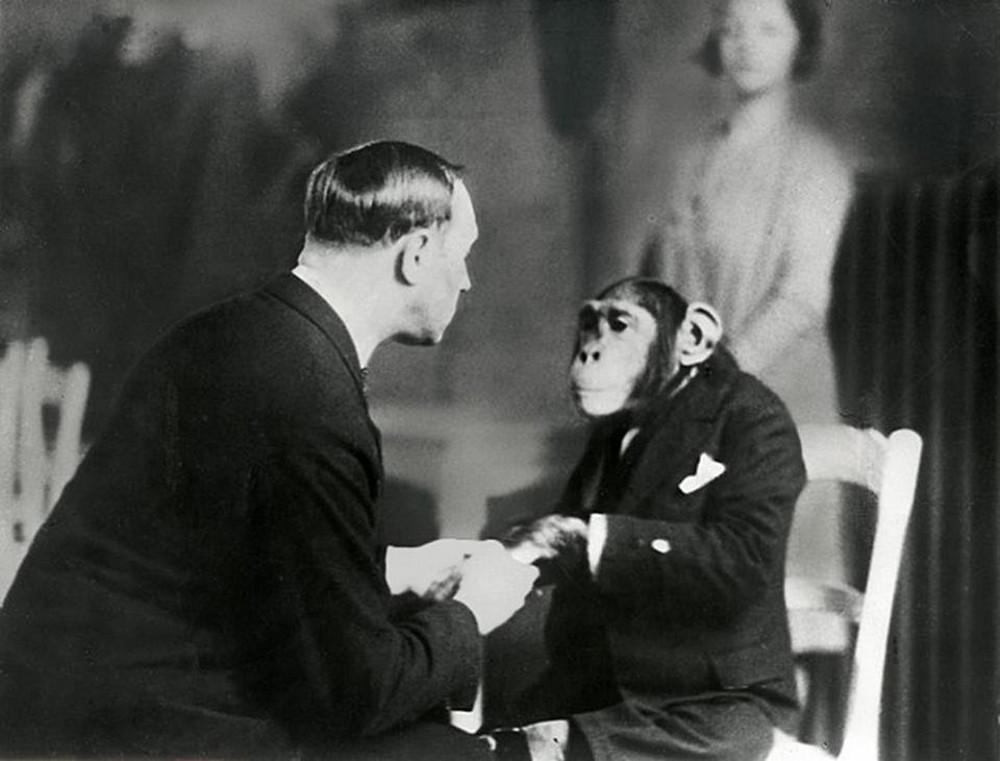 The telepath tries to hypnotise the chimpanzee, 1941