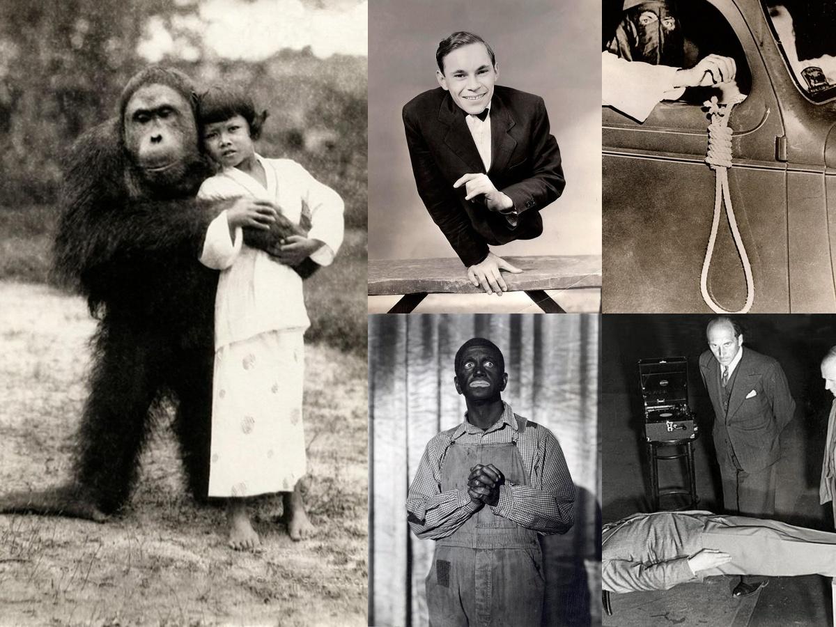 bizarre photos