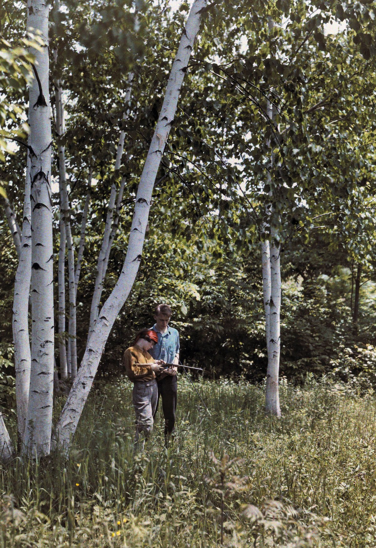 Two men stand among white birches in the Battenkill Valley
