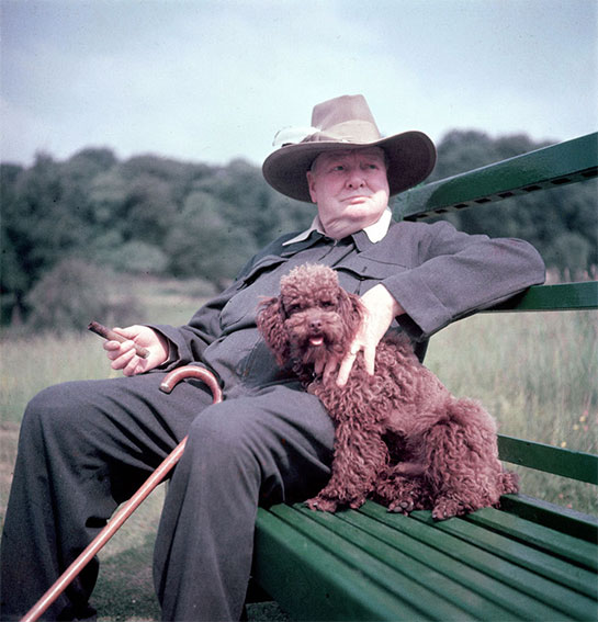 Winston Churchill and his poodle Rufus.